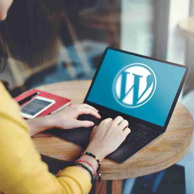 Mejores Paginas Web En Wordpress